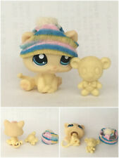 🐱 Littlest Pet Shop #1779 Yellow Kitten Baby Cat Blue Eyes Knit Hat Teddy Bear