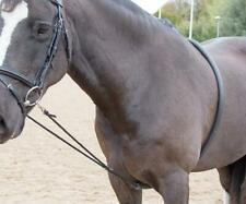 Shires Soft Lunging Aid in Black One Size