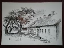 POSTCARD DENMARK THATCHED COTTAGES IN DENMARK  PENCIL SKETCH