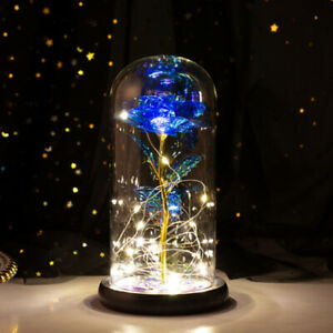 LED Rose Eternal 24K Gold Foil Flower With Lights In Dome Valentine's Day Gift