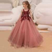 Girl Pageant Flower Lace Bridesmaid Formal Prom Wedding Holiday Party Tutu Dress