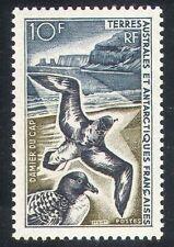 FSAT/TAAF 1963 Pintado Petrel/Birds/Gulls/Nature/Wildlife 1v (n27836g)