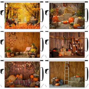 Thanksgiving Rustic Wood Harvest Pumpkin Photo Background 10X8FT Vinyl Backdrop