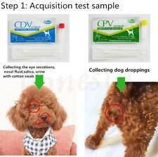 5 X Canino Perro moquillo virus CDV/CPV Casa nasal hisopo Papel de prueba de salud