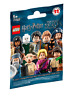 LEGO Minifigures HARRY POTTER & FANTASTIC BEASTS Series 71022 Pick / Choose