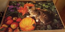 """Pumpkin Paws with Kitten 1000 pc Jigsaw Puzzle 19"""" x 27"""" Mega Puzzles"""