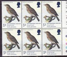 England - MNH - Vogels / Birds (block of 6 stamps)