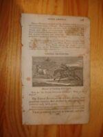 1833 ANTIQUE PRINT UNITED PROVINCES SOUTH AMERICA NR