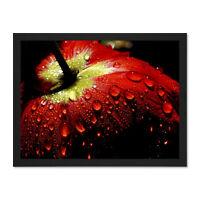 Tulip Close Up Macro Raindrops Large Framed Art Print Wall Poster