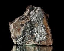 "2.8"" ShinySilver PYROLUSITE Crystals +MANGANITE Matrix Taylor Iron M MI for sale"