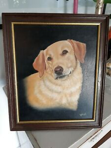 Labrador Golden Retriever Dog Portraint Oil Painting Framed Upsall