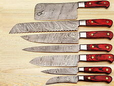 Eye Catching Custom Made Damascus Steel Professional Kitchen Knife set-DB-1081-7