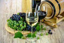 20 € Gutscheincode für Hawesko.de Sekte und Weine