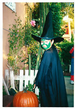 Found PHOTO Young Girl In Halloween Witch Costume w/ Face Makeup & Pumpkin