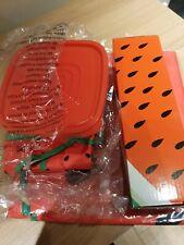 Watermelon lunchbox/picnic  Set