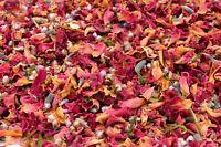 Natural Wedding Confetti, Autumn, Biodegradable Wedding Confetti Petals 1 Litre