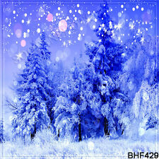 Christmas 10'x10' Computer/digital Vinyl Scenic Photo Background Backdrop BHF429