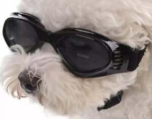 Small dog sunglasses dog goggles waterproof UV resistant elastic band dog glass