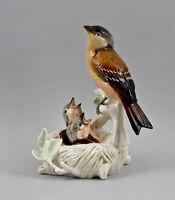 9941223 Porzellan Vogel Figur Fink mit Jungen im Nest Ens 10x9x16cm