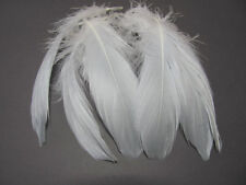 Select Goose Shoulder Feathers - Grey Ombre
