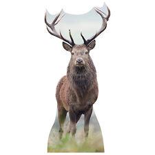 ELK Lifesize CARDBOARD CUTOUT Standee Standup Poster Prop Deer Antlers FREE SHIP
