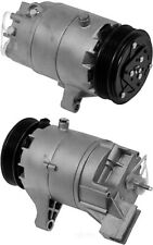 A/C Compressor Omega Environmental 20-21895-AM