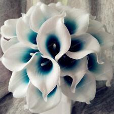 Royal Blue Center Calla Lily Bulbs, Rare Flower, Not Seeds, 5 Bulbs