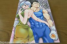 Dragon Ball Doujinshi Vegeta X Bulma Anthology (A5 90pages) Cool Chic style
