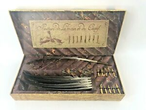 The Writing Collection Boxed Feather Quills Set Calligraphy 6 Quills + 11 Nibs