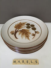 DENBY ~COTSWOLD~ dinner plates x 6
