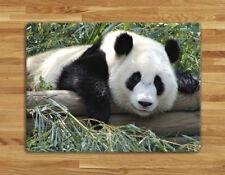 Work top saver, Glass Chopping board 40 x 30cm Panda 2 design