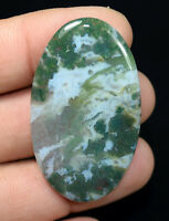 Excellent ! 55.00 Cts. 100 % Natural Moss Agate Oval Cab For Silver Pendant