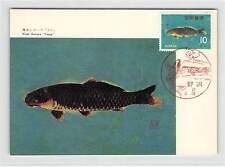 JAPAN MK 1966 FISCHE FISH CARP KOI MAXIMUMKARTE CARTE MAXIMUM CARD MC CM d9628