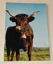 Carte Postale : PATURAGES en AUVERGNE - Taureau avec sa cloche Editions THEOJAC