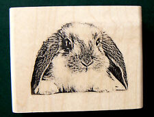 """P22 Bunny-Lop-rubber stamp WM 2x1.75"""""""