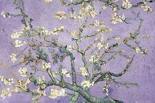 Vincent Van Gogh Purple Blossom New Large Maxi poster 61cm x 91.5cm GN0739 237