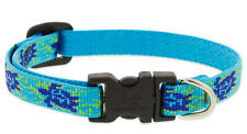 """New listing Lupine Dog Collar - 1/2"""", fits 8""""-12"""" neck - Turtle Reef"""