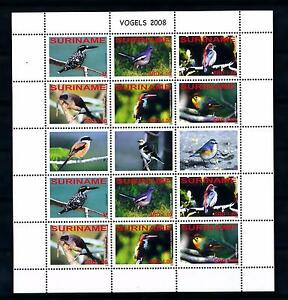 [SUV1570] Surinam Suriname 2008 Birds Vögel Oiseaux Miniature Sheet with tab MNH