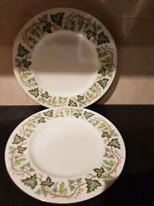 Wedgwood Santa Clara Dinner Plates x2