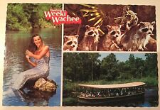 Florida's Weeki Wachee ~ Silver Mermaid, Wilderness River Cruise ~ Florida