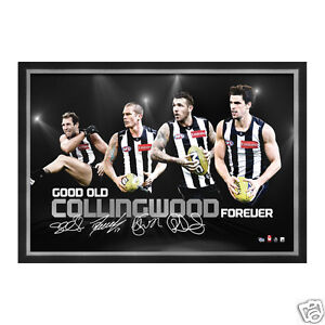 AFL Collingwood Magpies 4 Player facsimile signed and framed Sportsprint