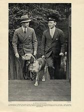 LABRADOR RETRIEVER AND OWNER DUKE OF YORK OLD ORIGINAL 1934 ROYALTY DOG PRINT
