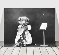 CUTE VINTAGE B&W Dog Dressed Up With Violin - CANVAS ART PRINT POSTER - 24x18""