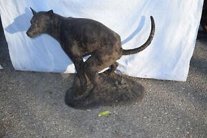Bronze-Hund, Antikpatina, ca.45kg, L:87cm