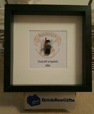 Harry Potter 3d Frame birthday present gift 18/30 and still no Hogwarts letter