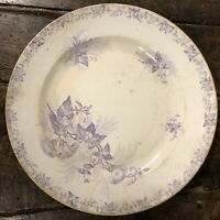 Sarreguemines Liseron Pexonne Faïence Ancien Céramique Vaisselle Plat Service