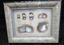 Vintage Japanese Cultured Pearl Specimens Oyster Growth wood Framed Display