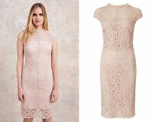 Phase Eight Becky Nude Pink Lace High Neck Pencil Dress Size 12 Wedding Guest