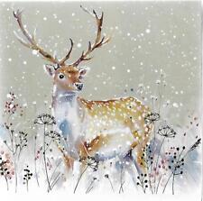 Paquete De 10 Tarjetas de Navidad de Ciervo Navidad en ayuda de Allen hospicio atención domiciliaria
