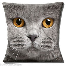 "Grey Cat 16""x16"" 40cm Cushion Cover British Shorthair with Amber Eyes Photo"
